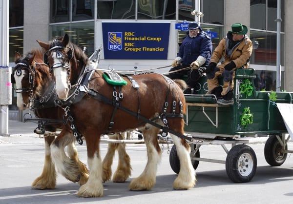 Ottawa St Patrick's Parade