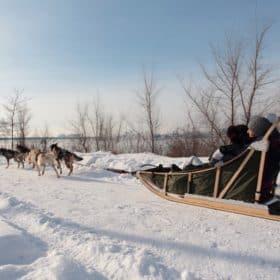 dogsled dogsledding fete des neiges parc jean-drapeau montreal