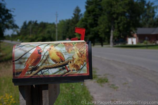 Wolfe Island road mailbox