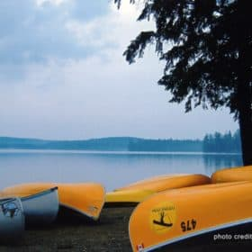 Yellow canoes by lake in Algonquin Park.