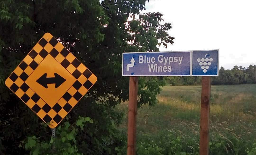 Blue Gypsy Wines sign