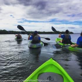 Kayakers in green rental kayaks at Sebastian Inlet State Park.