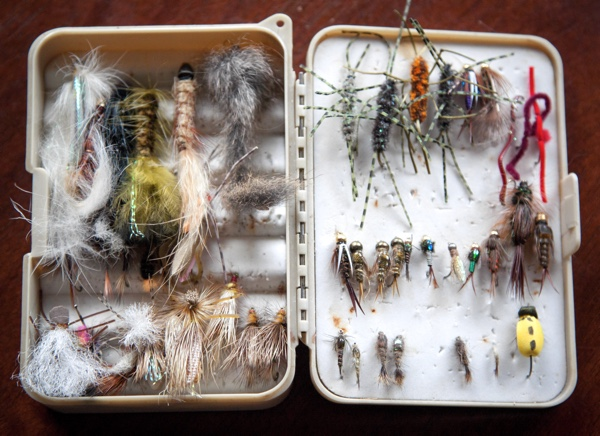 Feathery fishing lures arranged in an open tackle box. Photo by Sarah Labuda on Unsplash.